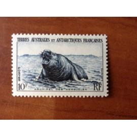 TAAF Yvert Num 6 Elephants de mer ANNEE 1956