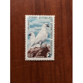 TAAF Yvert Num 13A Oiseaux Birds Chionis ANNEE 1959