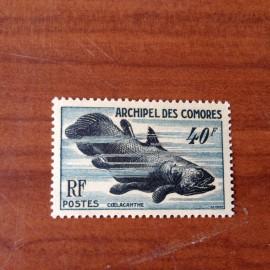 Comores 13 ** MNH Coelacanthe en 1954