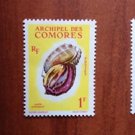 Comores 20 ** MNH Coquillages en 1962