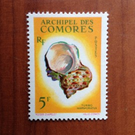 Comores 22 ** MNH Coquillages en 1962
